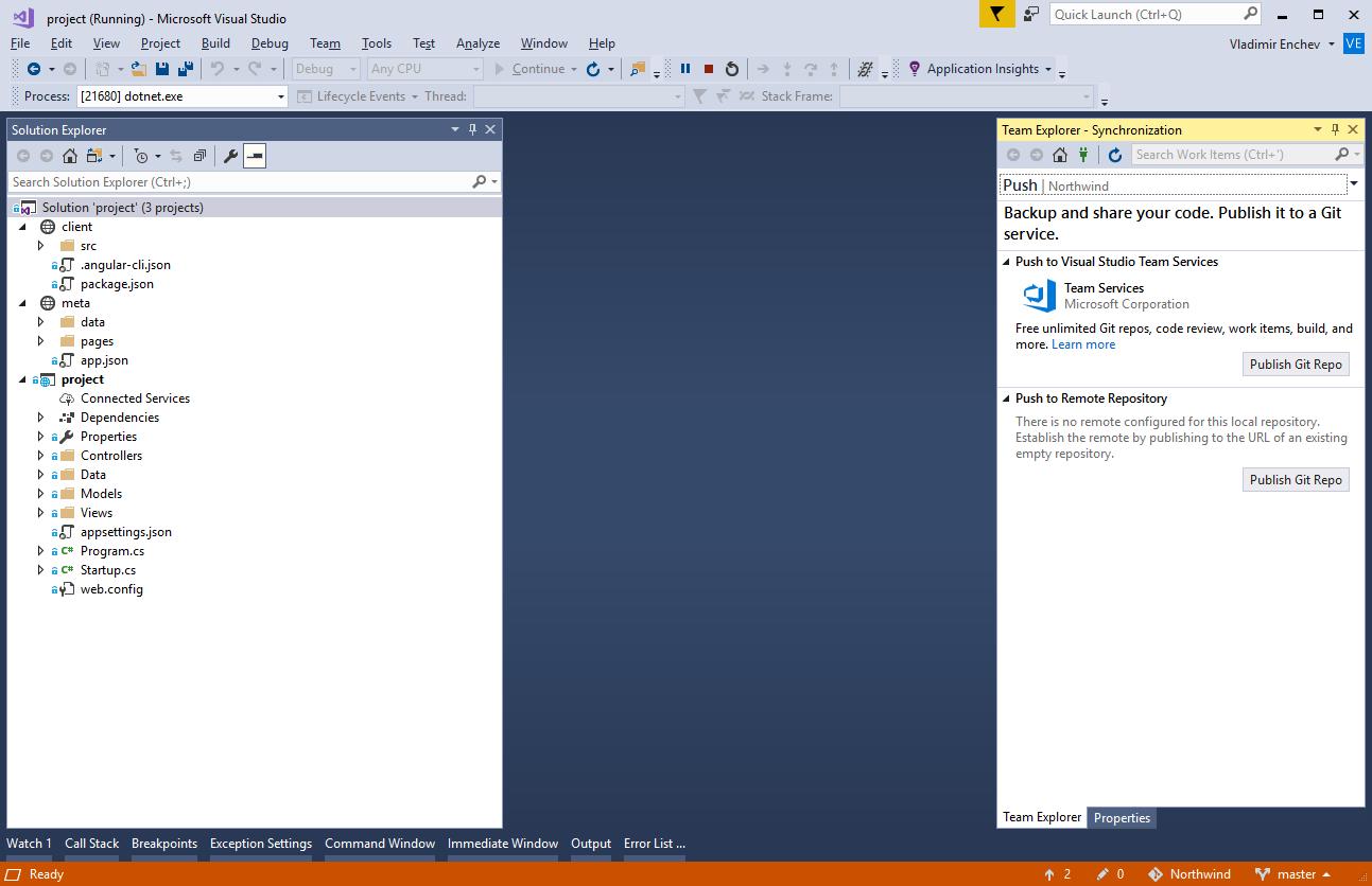 Visual Studio - Angular - Radzen